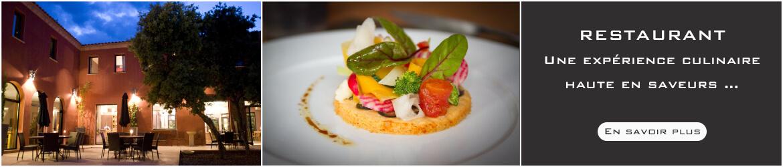 Restaurant, gastronomique, gastronomie, haut de gamme, standing, menu, qualité, Montpellier, Castries, hérault, languedoc-roussillon